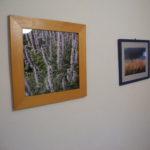 Fotos mit Naturmotiven